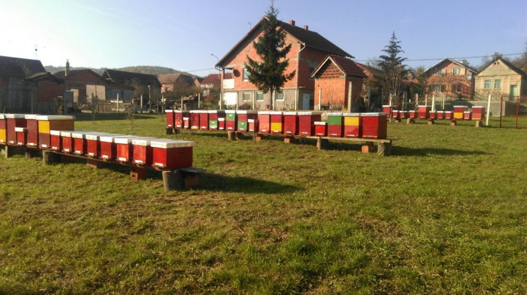 Najkvalitetniji kestenov med dolazi iz OPG-a Veber