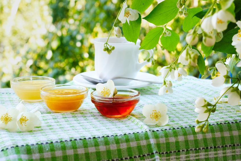 Najkvalitetniji med proizvodi se u pčelarstvu Veber