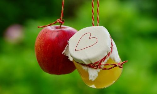 Med i jabučni ocat čine jedinstveni zdravi napitak